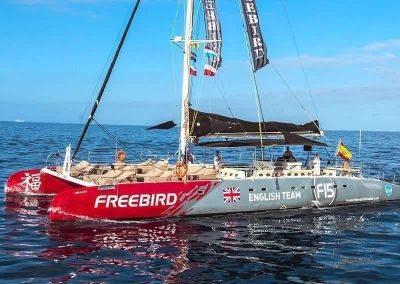 ¿Te gustaría disfrutar este finde de semana una excursión abordo de Freebird Catamarán – avistamiento de ballenas y delfines en Tenerife?
